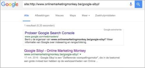 google-indexatie