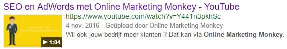 Rich Snippets Video
